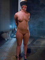 dolore BDSM sex