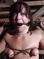 escape bdsm asian