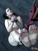 entire young bdsm